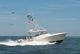 Castafari deep sea fishing the boat charter fishing boat for Cape cod deep sea fishing