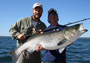 Castafari sport fishing deep seas fishing news cape for Cape cod deep sea fishing