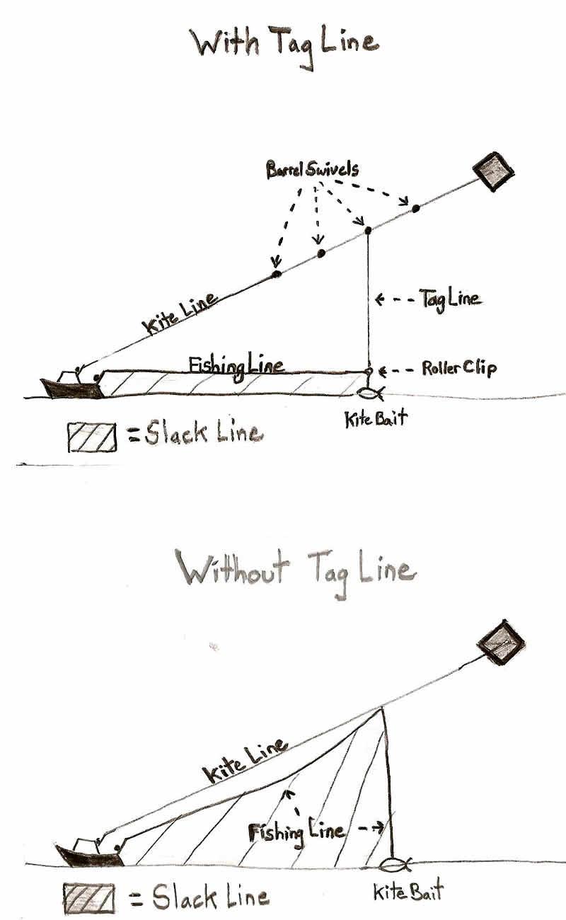 Kite Fishing In Nj Page 2 Diagram Http Castafaricom Assets Storne
